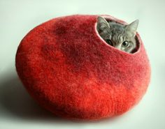 ASK for Custom felted Cat Bed OOAK Hand Felted Wool Cat Bed / Vessel / Furniture / Cat Nap Cocoon Crisp Contemporary Design One of the Kind Crazy Cat Lady, Crazy Cats, Cat Cave, Photo Chat, Felt Cat, Cat Furniture, Pet Beds, Dog Bed, Wool Felt