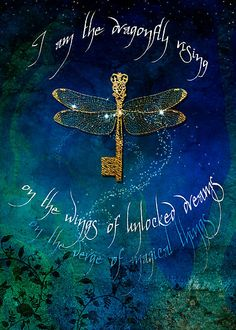 """""""I am the dragonfly rising on the wings of unlocked dreams on the verge of magical things."""" ~Aimee Stewart ..*"""