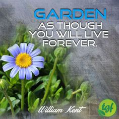 Garden as though you will live forever.  -   William...