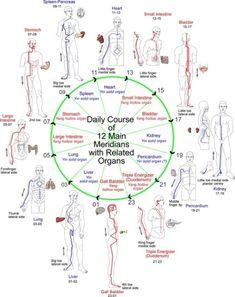 Shiatsu Massage – A Worldwide Popular Acupressure Treatment - Acupuncture Hut Qi Gong, Acupuncture Points, Acupressure Points, Acupressure Therapy, Reiki, Shiatsu, Eastern Medicine, Traditional Chinese Medicine, Alternative Health