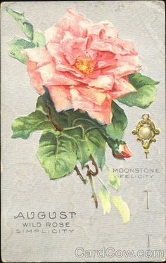 August: Wild Rose and Moonstone
