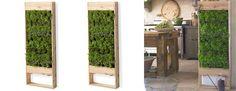 Indoor vertical garden for indoor veggies and herbs.  I'm totally digging this.