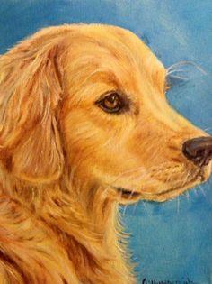 8x10 oil painting of Golden Retriever