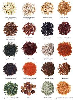 Tipos de alubias #Infografia #Alimentos #Legumbres #Cook