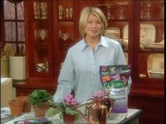 Martha Stewart answers questions about African Violet plants.