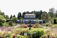 Eine romantische Hochzeit im Botanischen Garten München. Fotos von der Tischdeko im zarten Vintage-Stil in den Farben Rosa, Vanille und Pfirsich.