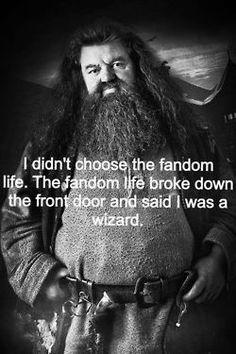 Hp Fandom as told by Hagrid ;)