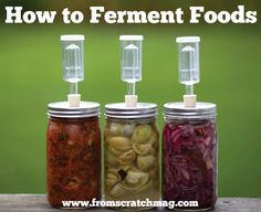 For a few thousand years now, people have been fermenting food. You can learn how!