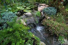 Clearpond - Project Gallery - The Garden Pond - Garden Waterfalls Moving Plants, Grandmas Garden, England Australia, Pond Pumps, Garden Waterfall, Garden Ponds, Fish Ponds, Irrigation, Garden Bridge