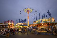 STRANGE STATE AND COUNTY FAIRS - FARM FUN - COTTON CANDY - ANIMALS - MIDWAY FOOD FUN