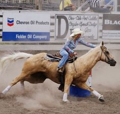 """(Open with savanna) she was barrel racing Cherokee in the outdoor arena and saw you she cane over after they finished a great barrel run she patted Cherokee and walked over """"hey"""" she said to you Barrel Racing Saddles, Barrel Racing Horses, Barrel Horse, Cowgirl And Horse, Horse Love, Horse Riding, Cowboy Hats, Pretty Horses, Beautiful Horses"""
