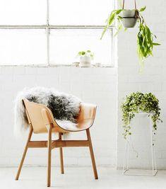 Übertöpfe, Pflanzenampeln und Tipps für frisches Grün: Wir zeigen zehn Ideen zum Wohnen mit Zimmerpflanzen.