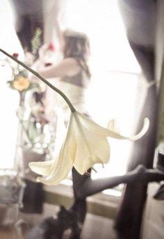 Flower art photography. #deadwhite #realistic #photography #flower #art #schenryj