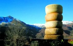 Fromage pur brebis des Pyrénées :)