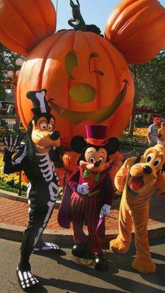 Thanksgiving at Disney