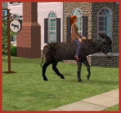 Rebecah's Animated Donkey