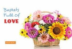 People with loved ones, friends, clients or colleagues abroad may want to send them fresh flowers to brighten up their day. If that's the case, then flower delivery Singapore is more than happy to help you with your endeavor. With their online florist service, you don't have to track down a local floristry in their