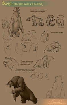 Beorn by ancalinar on DeviantArt Animal Sketches, Animal Drawings, Art Drawings, Learn To Sketch, Bear Drawing, Nature Sketch, Bear Art, Animal Design, Creature Design