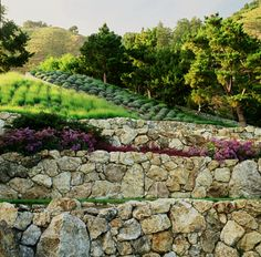 stone walls and more