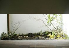 OKUの庭 Modern Japanese Garden, Japanese Plants, Green Landscape, Landscape Design, Landscape Architecture, Terrace Garden, Indoor Garden, Modern Landscaping, Backyard Landscaping