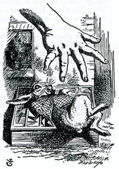 Alice's giant hand - Alice's giant hand  Sir John Tenniel  1865  Wood-engraving by Dalziel  Illustration for the second chapter of Lewis Carroll's Alice in Wonderland