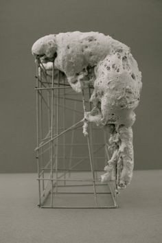 Concept Model: The Parasite. Made of construction foam.