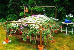 """Bed"" of Flowers  -  Garden beauty from a re-purposed old iron bed frame"