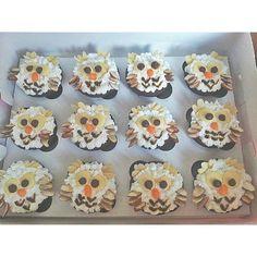 Cute Owl Cupcakes