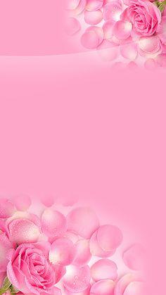 1 million+ Stunning Free Images to Use Anywhere Rose Flower Wallpaper, Flower Background Wallpaper, Background Images Wallpapers, Butterfly Wallpaper, Flower Backgrounds, Wallpaper Backgrounds, Iphone Homescreen Wallpaper, Pink Wallpaper Iphone, Cellphone Wallpaper