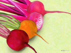 Imagem intitulada Grow Beets Step 1