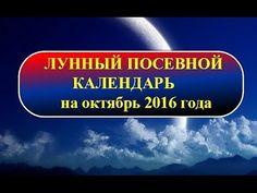 Лунный посевной календарь на октябрь 2016 года