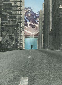 Into the wild | Flickr: Intercambio de fotos