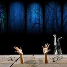 crueldad | Flickr: Intercambio de fotos