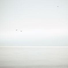 Three Birds IV (by dougchinnery.com)