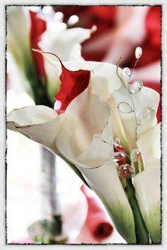 Wedding Photography  Imago Photography  www.myimagophotography.com  #flowers #wedding #day