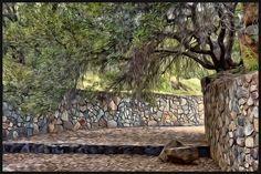 Dos Picos Park - Ramona, CA - Craig Stilson Paintography Oak Harbor Wa, San Diego City, Places To Visit, California, Photoshoot, Park, Plants, Photography, Wedding