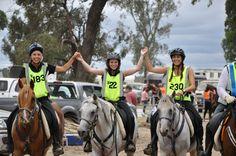 Endurance horse ride #ArabianHorseAssociation #ArabianHorses #Trail