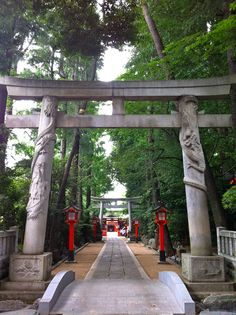 Mahashi Inari Shrine (馬橋稲荷神社). No Komainu is in this shrine. Instead, a pair of stone-carved foxes and a pair of dragons on the Torii (鳥居) gateway are there.