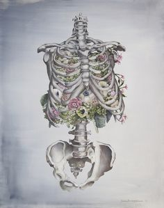 Floral Anatomy Art Print / Society 6 / Trisha Tompson Adams