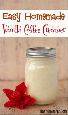 ingredients} - The Frugal Girls Easy Homemade Vanilla Coffee Creamer Recipe! ~ from - just 3 ingredients and SO delicious! ~ from - just 3 ingredients and SO delicious! Vanilla Coffee Creamer, Homemade Coffee Creamer, French Vanilla Creamer, Easy Coffee Creamer Recipe, Clean Coffee Creamer, Natural Coffee Creamer, Dairy Free Coffee Creamer, Planning Menu, Salsa Dulce