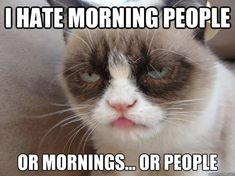 I hate morning people grumpy cat quotes, grumpy cat meme, grumpy kitty, cat Good Morning Cat, Funny Good Morning Images, Good Morning Quotes For Him, Good Morning Texts, Morning People, Morning Humor, Morning Person, Morning Pictures, Morning Coffee