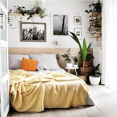 195 Best Plants Bedroom Images In 2019 Bedroom Room Decor