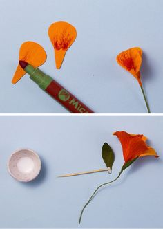 DIY paper flowers: Nasturtium wreath How to make paper flowers with Jennifer Tran of papetal Crepe Paper Flowers Tutorial, Paper Flower Garlands, How To Make Paper Flowers, Paper Flowers Craft, Flower Crafts, Diy Flowers, Fabric Flowers, Crepe Paper Crafts, Origami Paper Art