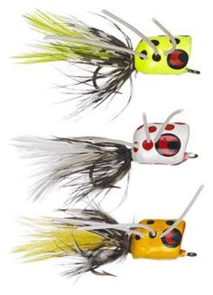 Popping bugs for fly fishing thread question about for Bass pro shop fly fishing