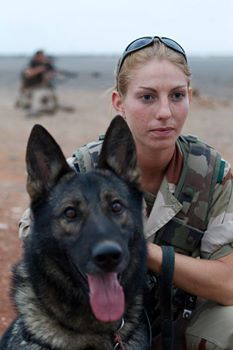 Military War & Handler - God Bless & Protect you! Military Working Dogs, Military Dogs, Police Dogs, Military Police, German Shepherd Dogs, German Shepherds, Work With Animals, War Dogs, Service Dogs