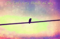 The Lord is my strength and my song; he has become my victory. He is my GOD, and I will praise Him