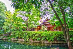 昨日行ってきた熊谷市にある星溪園。  回遊式日本庭園。落ち着いた佇まい。心が洗われた。  近くに線路が…