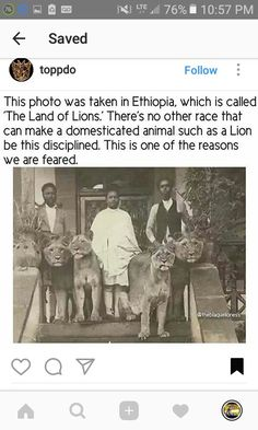 Taming the Lions.Lions of Judah Black History Books, Black History Facts, Black History Month, Strange History, African Culture, African American History, British History, History Education, We Are The World