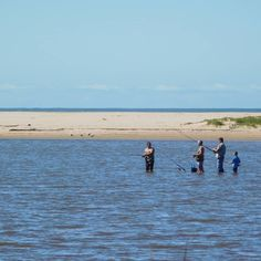 Fishing in the Mpenjati estuary Kwazulu Natal, Fishing, Coast, Beach, Water, Outdoor, Instagram, Gripe Water, Outdoors