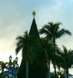 The star atop the 100Foot Christmas Tree in Delray Beach FL http